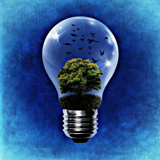 Graphic of a light bulb on a faded blue background. The bulb contains a leafy and green tree, with birds on it and a blue sky in the background.