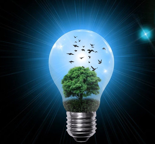 A large light bulb with rays extending out from a light source in the light bulb into a completely black background beyond the glass, and the light bulb has a full tree growing inside and the silhouettes of birds flying out of the tree into a sky.